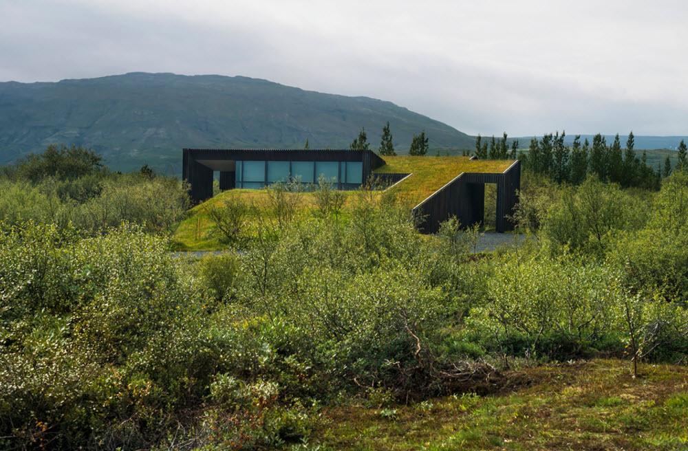 Diseño de vivienda presenta continuidad de techo verde