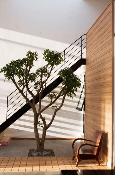 Jardín interior casa moderna