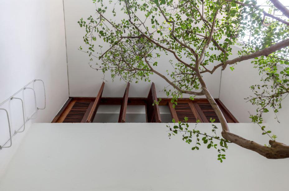 Modernos interiores con jardines